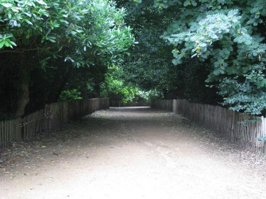 קנווד האוס, השביל בתוך היער